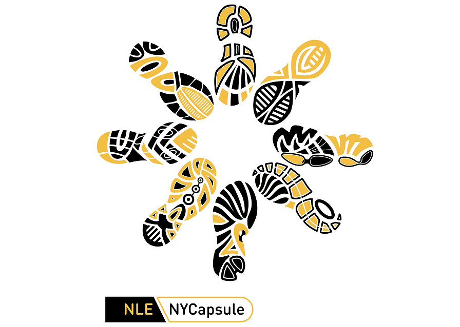 NLE NYCapsule Image NYCCo.jpg