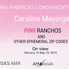 Exhibition: PINK Ranchos and Other Ephemeral Zip Codes by Carolina Mayorga