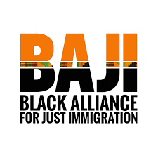 Organization Spotlight: Black Alliance for Just Immigration