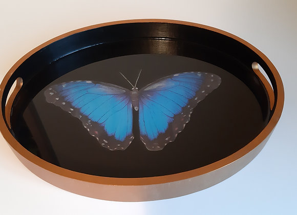 Blue Morpho butterfly Oval tray