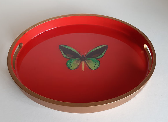 Vivid Orange and Renaissance Gold Oval Serving Tray with butterfly
