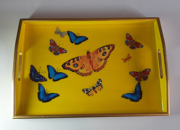 Cadmium yellow medium tray with butterflies