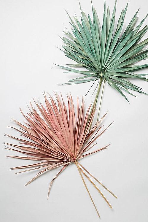 Букет из сушеной пальмы