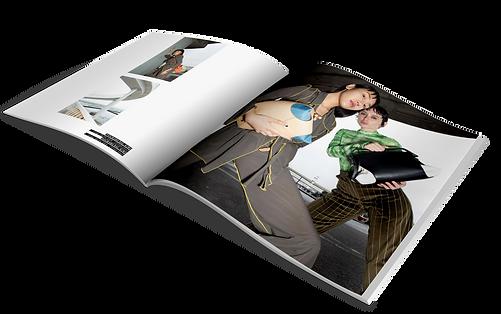 freebie book site.png