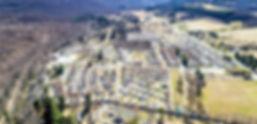 mountain_pines.jpg