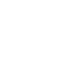 DP-Final-Logo_White_icon.png