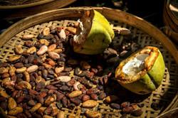 Cocoa in Bali