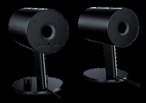 RAZER Nommo Gaming Speakers