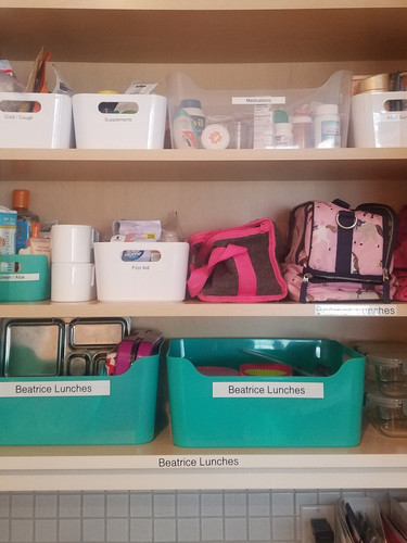 Lunch Prep and Medicine Cabinet