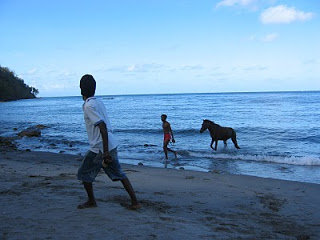 Gems Horseback Riding and Swimming with horses