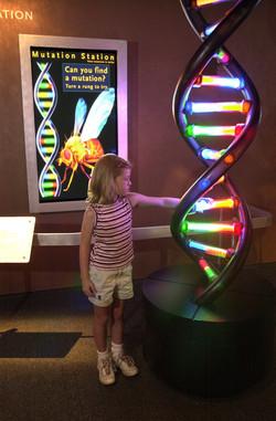 Mutation station interactive