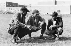 Coaches Cheston, Wyatt, Poole