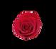 20210128_141312_edited_edited_edited.png