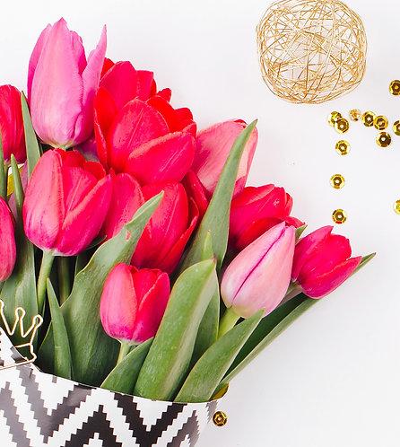 Cut Tulip Bouquets