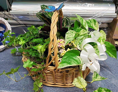 Green Garden Basket