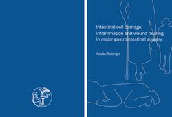 dissertatie K Reisinger