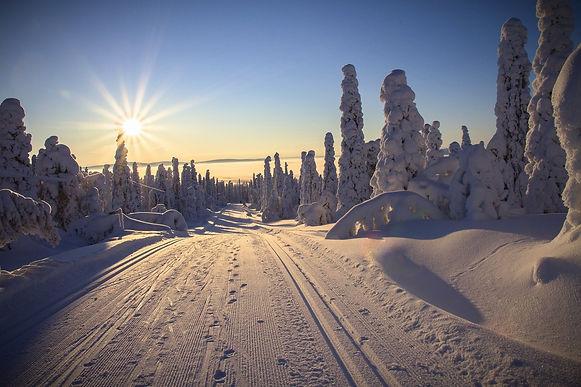 finland-2215318_1920_edited_edited.jpg