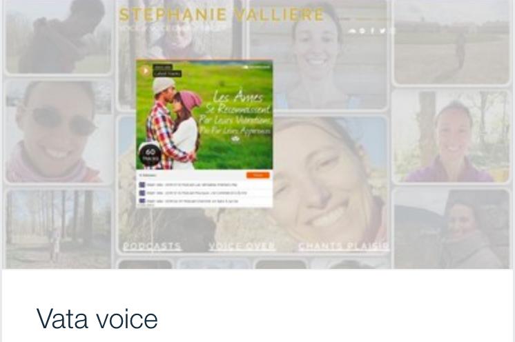 Exemple site web artiste vocal voice over, Vata.png