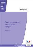 flotte commerce france 012019.jpg