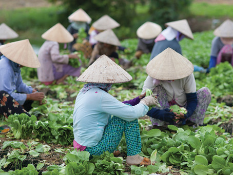 Asia-Pacific Farmers' Forum