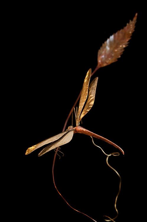 Volovagante Libellula | Dragonfly