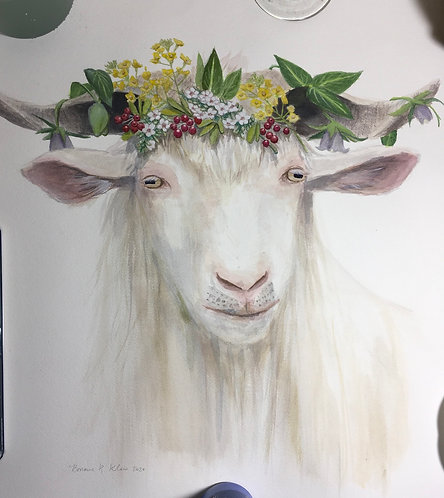 Hexi cashmere goat  with flower crown