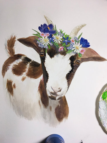 Swiss tauernsheck goat with flower crown