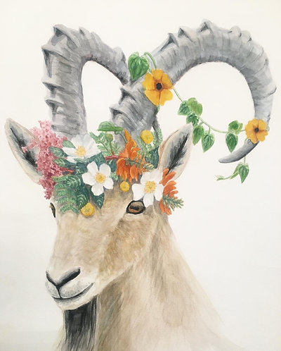 Nubian ibex with floral crown