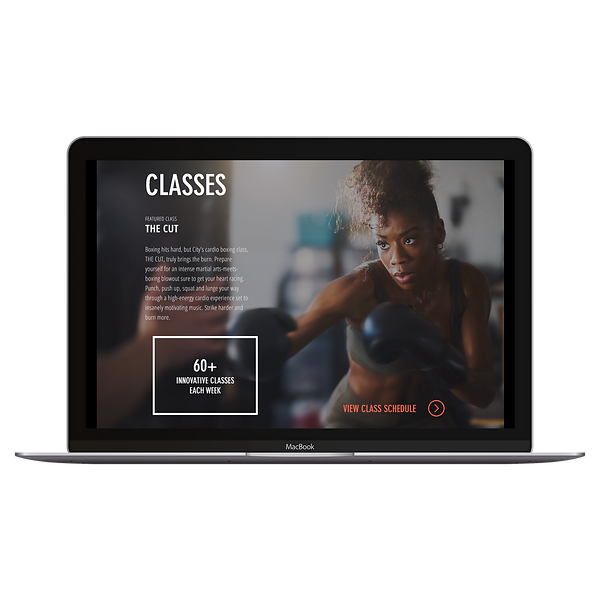 Websites for Gyms