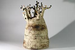 baobab blanc (2).JPG