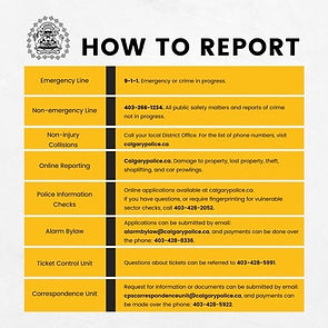 how to report.jpg