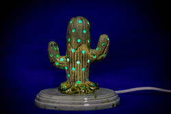 Cactus light sm