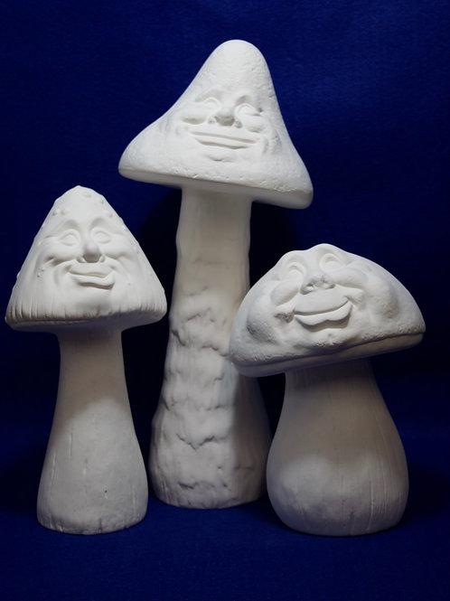 Face Mushrooms Lg -Med - Sm