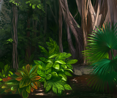 Tropical Landscape Study