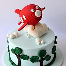 Cheeky Aeroplane Cake