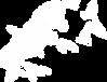 logo-vah.png