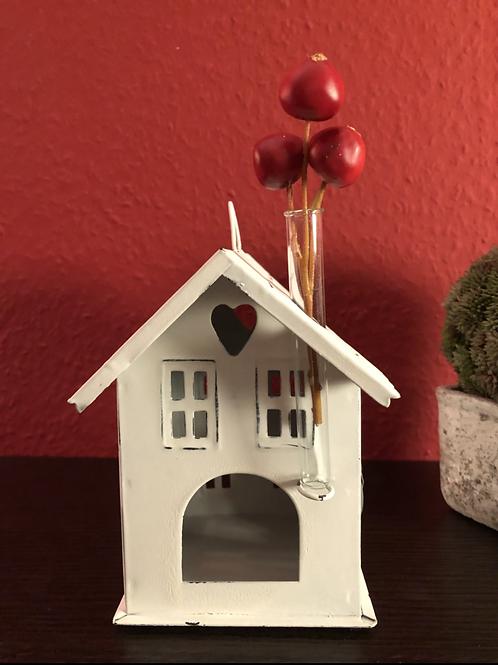 Haus klein mit Reagenzglas - Zink/Weiß