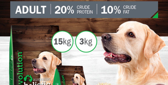Lamb and Rice Adult Dry Food 15kg