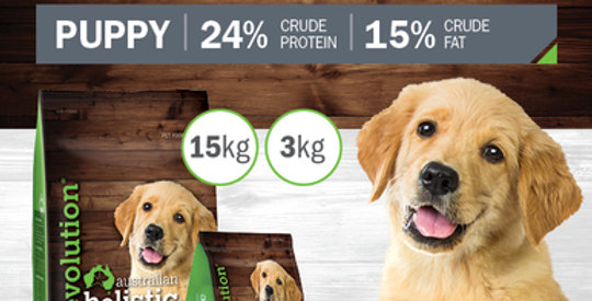 Lamb and Rice Puppy Dry Food 15kg