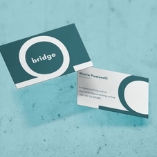 Bridge Coaching Online