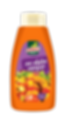 Springsauce f450ml sos dulce acrisor.png