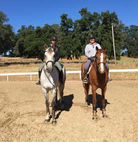 Blue Water Farms Rescue CA Horse Riding Lessons for all ages