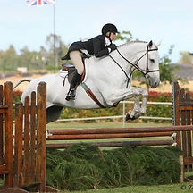 Blue Water Farms Rescue CA Equestrian Competition