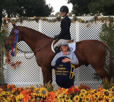 Blue Water Farms Rescue CA Equestrian Lessons for Students