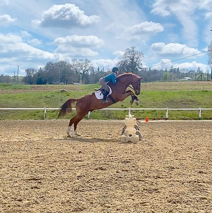 Blue Water Farms Rescue CA Equestrian Lessons for kids