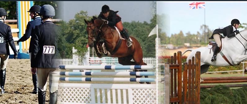 Blue Water Farms Rescue CA Horse Equestrian Lessons Near Me