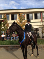 Blue Water Farms Rescue CA Equestrian Competitions