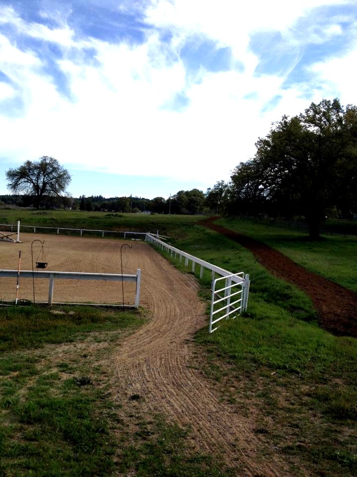 Blue Water Farms Rescue CA Top Horse Riding Facility