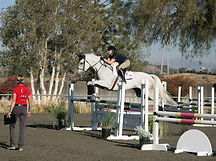 Blue Water Farms Rescue CA Equestrian Trainer Near Me