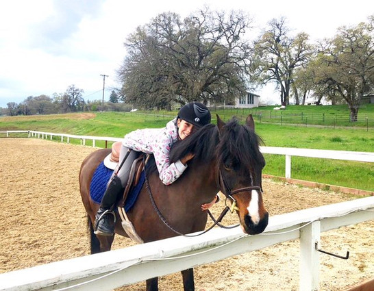 Blue Water Farms Rescue CA Top Horse Trainers Near Me